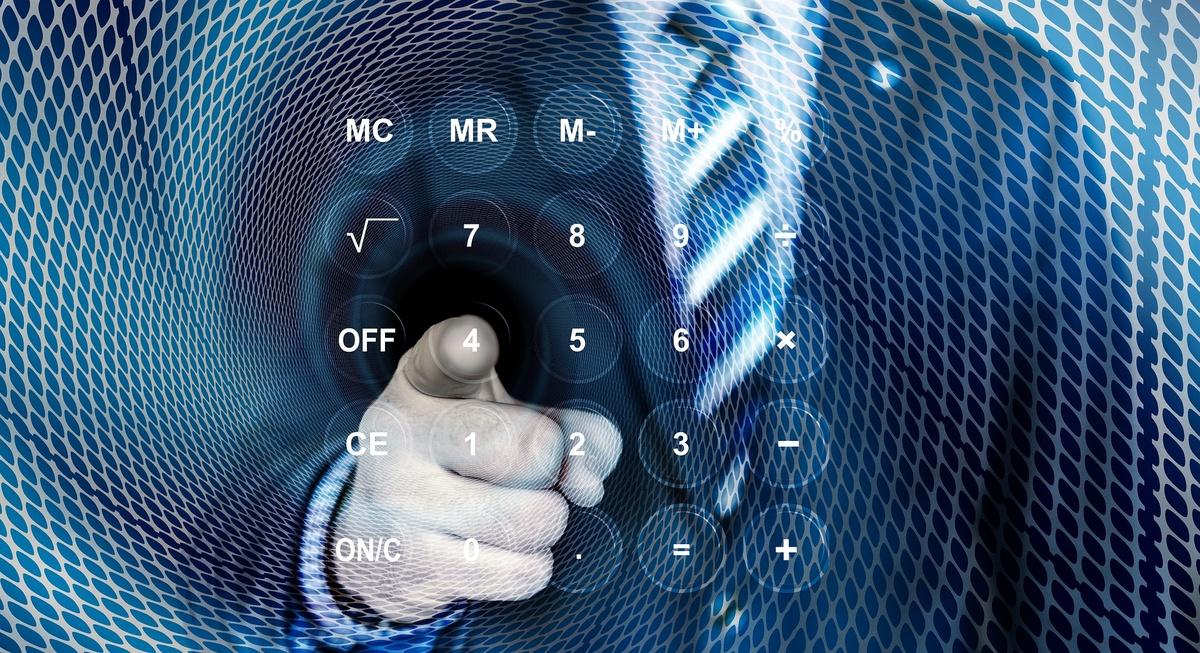 цифровая налоговая инспеккция