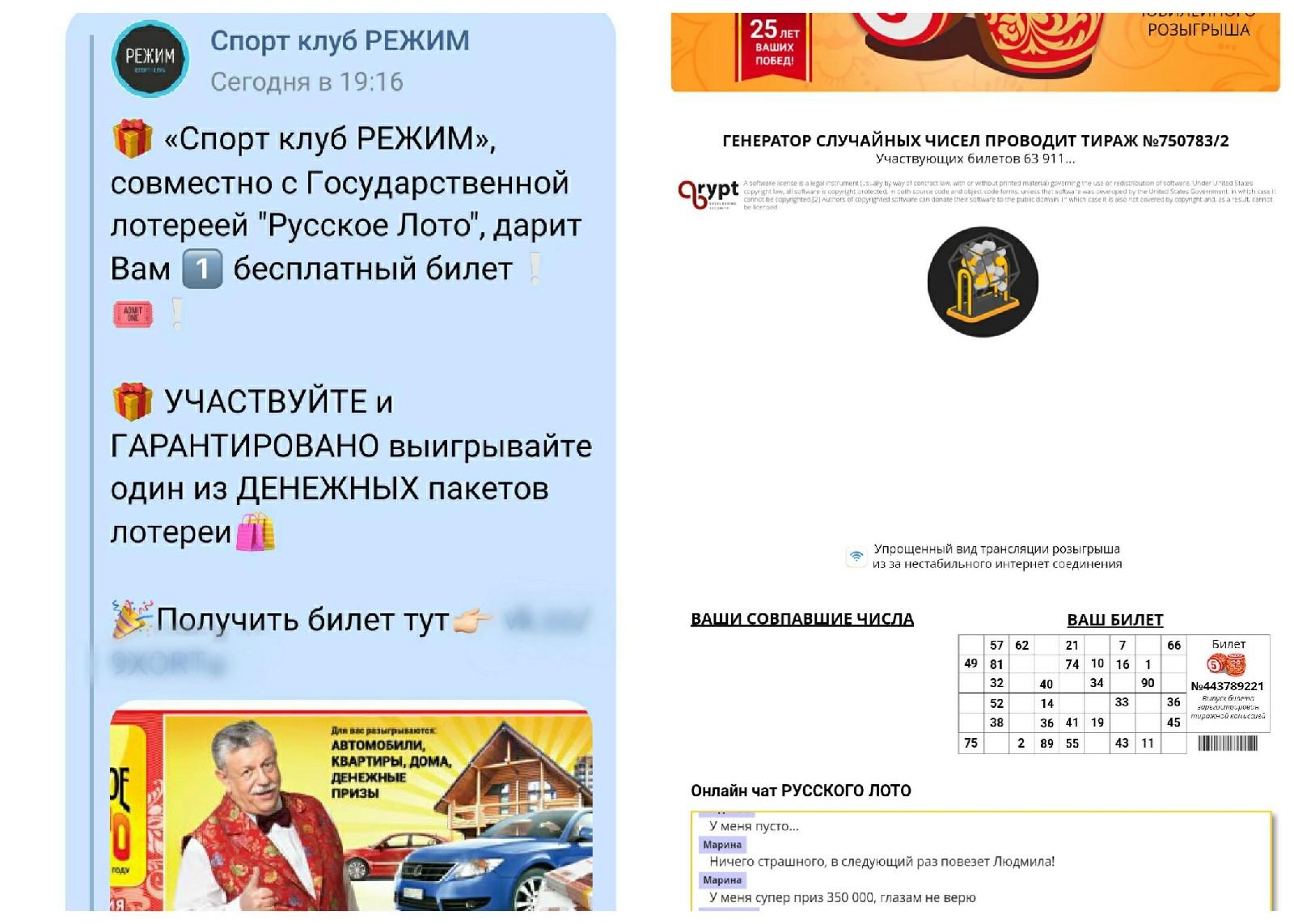 скриншот сообщений и сайта мошенников